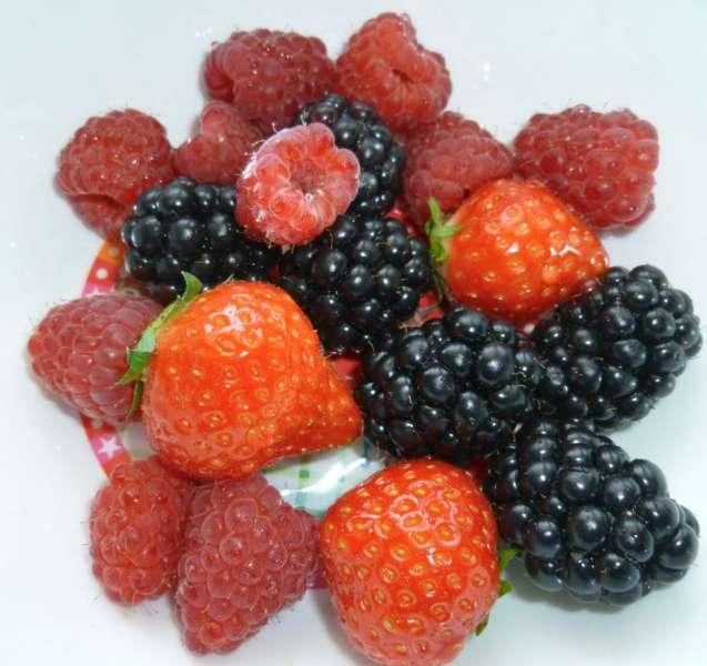Cupcakes van zomerfruit
